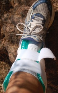 old splint in Zion National Park